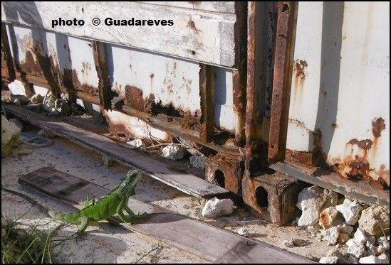 http://voyages2jacques.v.o.pic.centerblog.net/7c7cd6b4.JPG