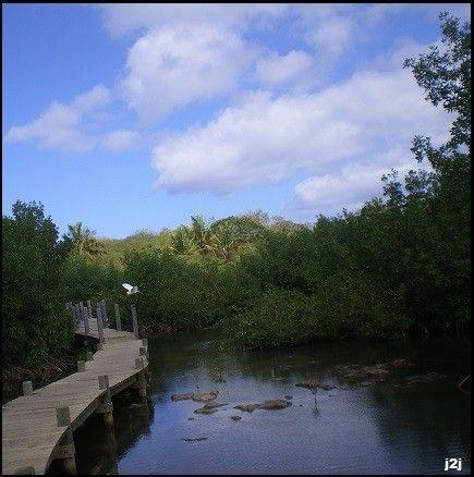 http://voyages2jacques.v.o.pic.centerblog.net/85a67970.JPG