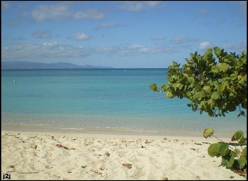 http://voyages2jacques.v.o.pic.centerblog.net/d3e080bb.JPG