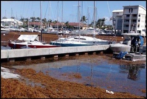 http://voyages2jacques.v.o.pic.centerblog.net/db1b3936.jpg